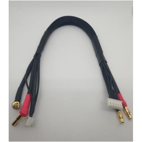 4S Cable de carga 40cm (4/5mm,4S-XH)(4mm,5PIN-XH)